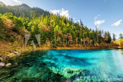 Fototapeta Piękny krajobraz z lasem i jeziorem (180722682)