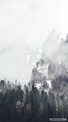 Fototapeta Mglisty krajobraz (212111538)