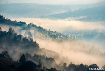 fototapeta Drzewa na wzgórzu we mgle (216522286)
