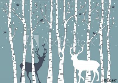 Fototapeta Drzewa brzozy i jelenie (45222897)