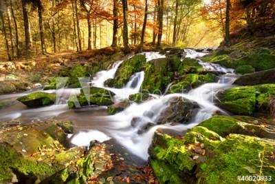 Fototapeta Wodospad w jesiennym świetle ( 46020933)