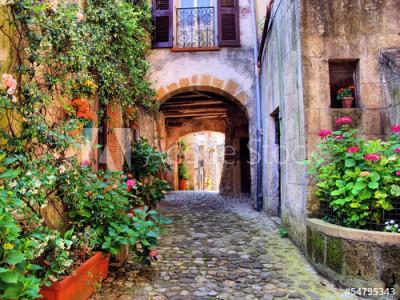 Fototapeta Brukowana uliczka w toskańskiej wiosce, Włochy (54795343)