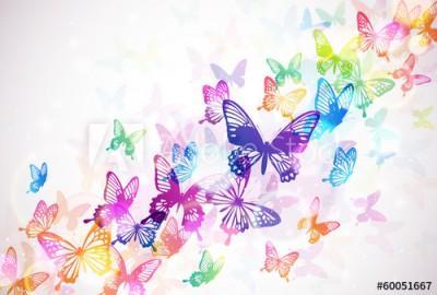 Fototapeta Kolorowe motyle (60051667)