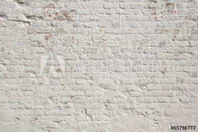 Fototapeta Biała ściana z cegieł, tło (65798777)
