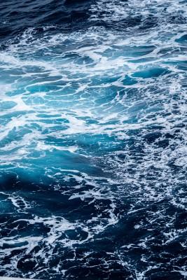 Plakat Piana morska